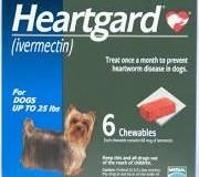 1-25lbsHeartgard