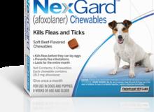 Nexgard10-24lbs