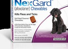 Nexgard24-60lbs