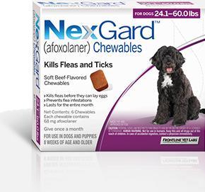 Where Can You Buy Nexgard For Dogs