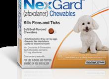 Nexgard4-10lbs