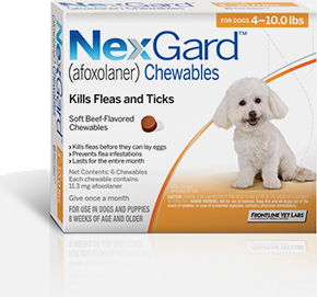 What is the best oral flea and tick treatment for dogs